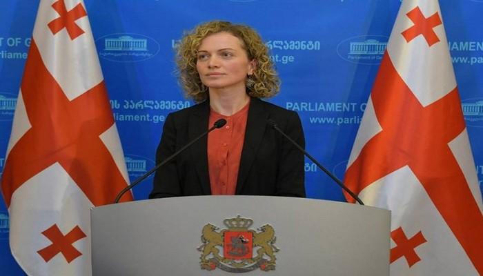 """Gürcüstan parlamentinin komitə sədri: """"Keşikçi Dağı ilə bağlı məsələni siyasiləşdirmək olmaz"""""""