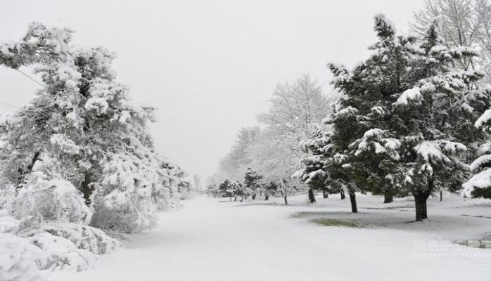 В горных районах Азербайджана температура опустилась до минус 9-15 градусов