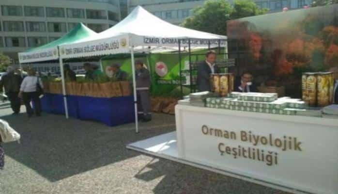 """Azərbaycan 'Türkiyədə biomüxtəliflik"""" mövzusunda toplantıda iştirak edir"""