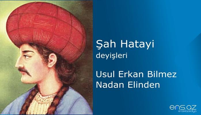 Şah Hatayi - Usul Erkan Bilmez Nadan Elinden