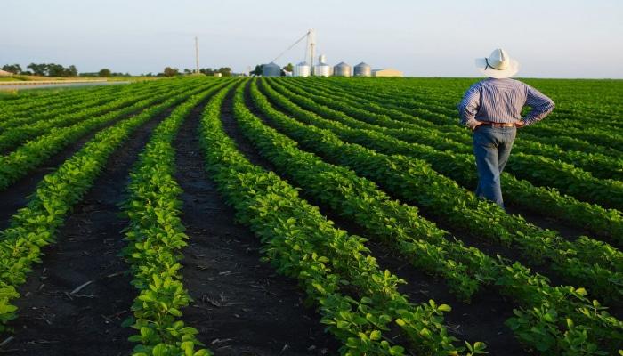 Минсельхоз Азербайджана: Фермеры могут беспрепятственно перемешаться между регионами