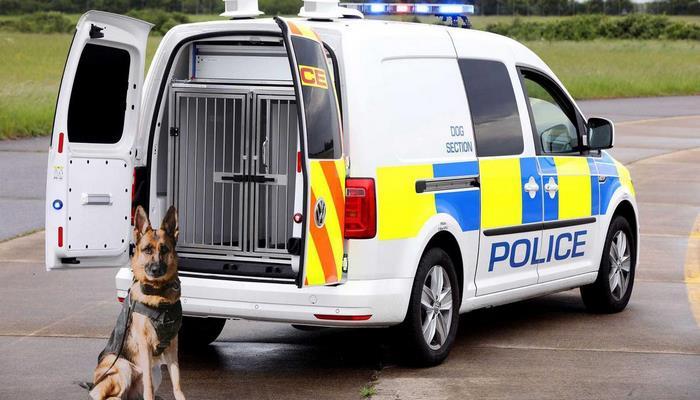 Volkswagen сделал фургон для полицейских собак