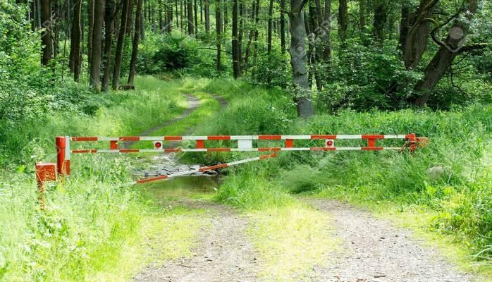 В шести районах Азербайджана установлены шлагбаумы на въездах в леса
