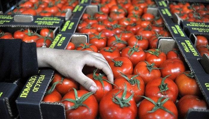 Rusiyanın pomidor bazarı uğrunda savaş: Azərbaycan nə etməlidir?
