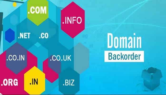 Alan Adı (Domain) Süresi Dolduktan Sonra Ne Yapılmalıdır?