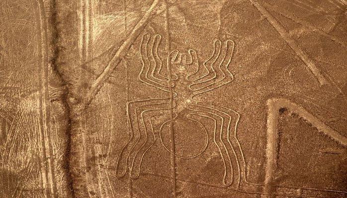 Ученые смогли раскрыть тайну цивилизации, обитавшей на плато Наска