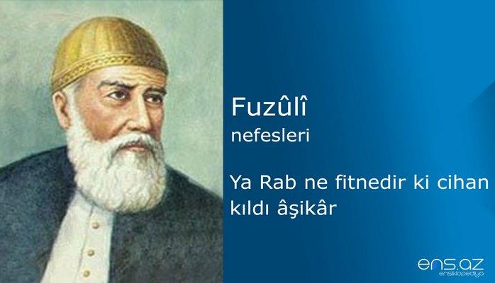 Fuzuli - Ya Rab ne fitnedir ki cihan kıldı aşikar