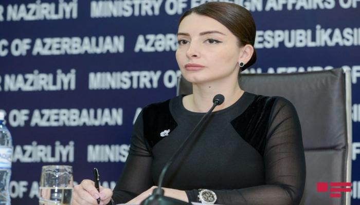 """Leyla Abdullayeva: """"Kipr XİN-in bəyanatı birtərəfli xarakter daşıyır və qərəzlidir"""""""