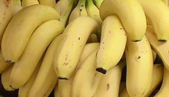 Turkmenistan expecting its first harvest of bananas