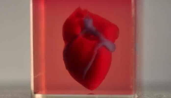 Израильские ученые первыми в мире напечатали живое сердце на 3D-принтере