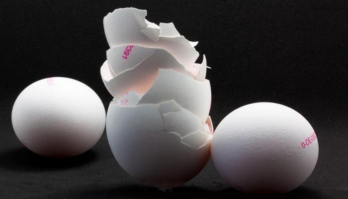 Ученые: Из яичной скорлупы можно делать автозапчасти
