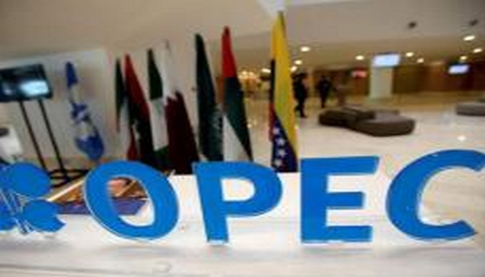 OPEC+ countries performed Vienna agreement by 104% in October - delegate