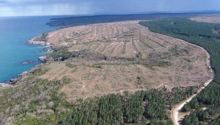 """Nükleer santral projesinin durdurulmasının ardından çevreci örgütlerden """"Sinop bizimdir"""" açıklaması"""