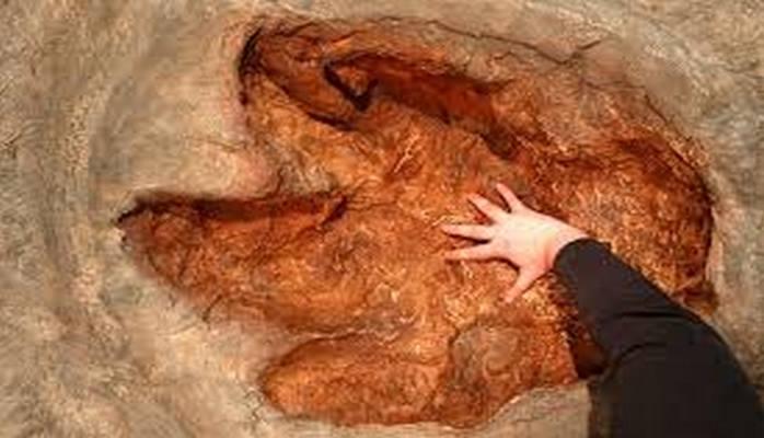 Спелеологи обнаружили следы динозавров при изучении глубоких карстовых пещер в Узбекистане