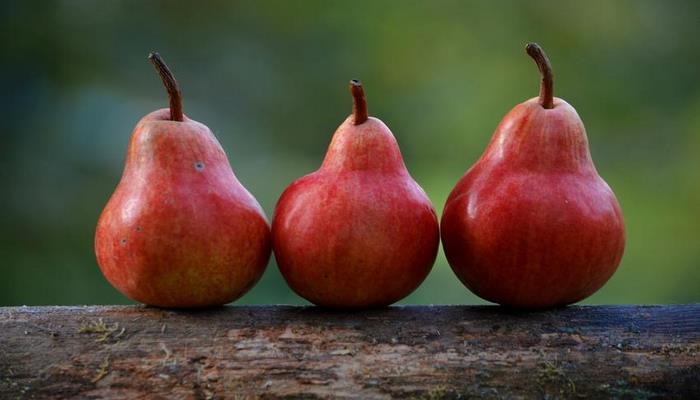 Медики назвали 6 поддерживающих здоровье почек продуктов