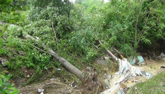 Yağmur hayatı felç etti; dereler taştı, köprüler yıkıldı, ağaçlar devrildi