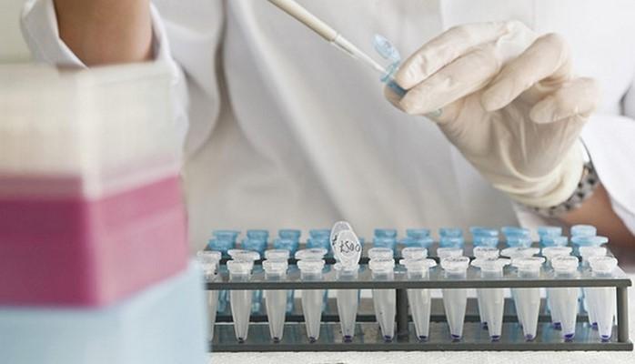 Учёные установили причину рака
