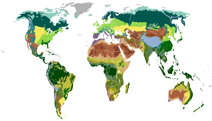 Təbii zonalar