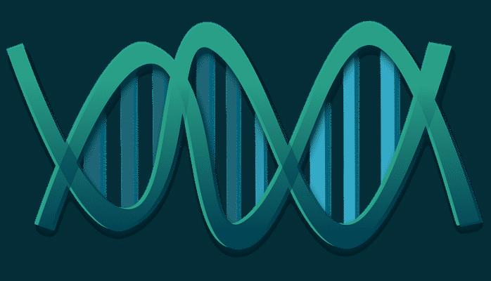В Китае ученые разработали новую методику изменения генома человека
