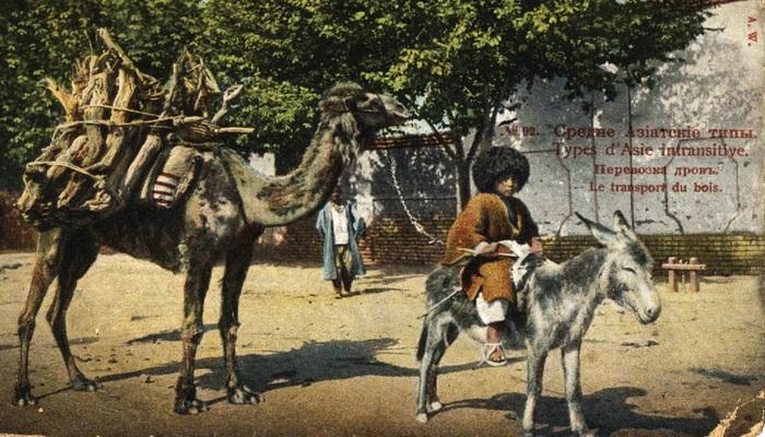Кавказ, Центральная Азия и Константинополь на старинных открытках (ФОТО)