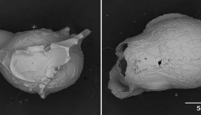 Открыт новый тип вулканического пепла в виде крошечных пузырьков