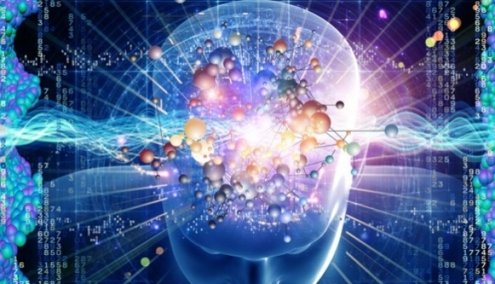 Beyin hüceyrələrini bərpa edən sözlər mövcuddur