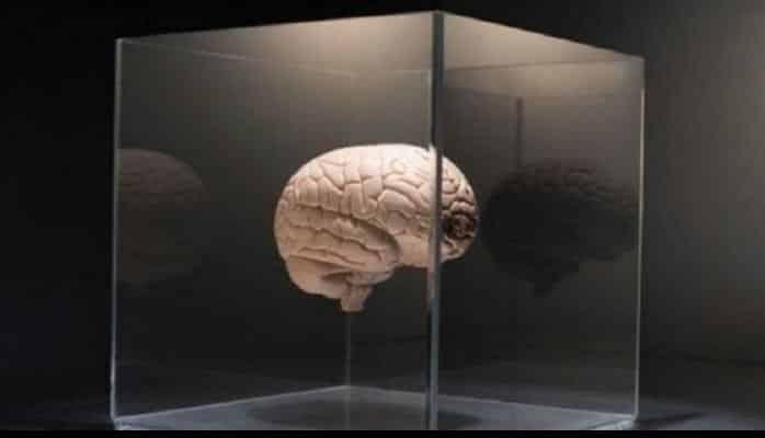 Beyni yaşlanmaqdan qorumağın altı yolu