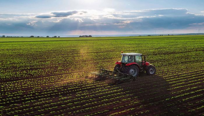 Azərbaycanın aqrar sektorunda yeni kooperativ yaradılır