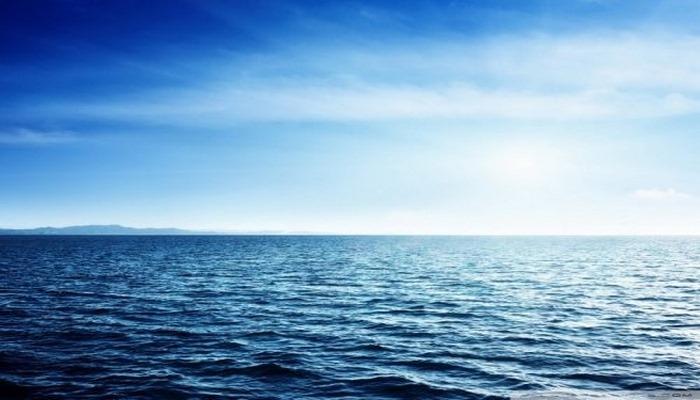 Ученые из Университета Йорка наметили, как защитить более трети мирового океана к 2030 году