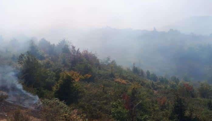 Hirkan Milli Parkının ərazisində yanğın tam söndürülüb