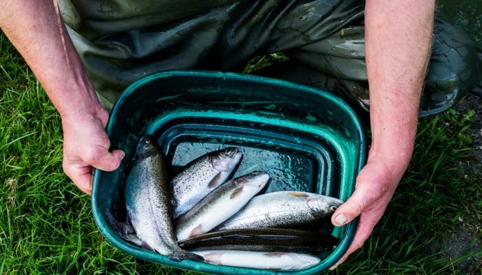 Оштрафован рыболов-браконьер