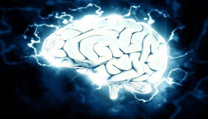 Учёные выяснили, что воздействие электрическим током на мозг способно остановить переедание