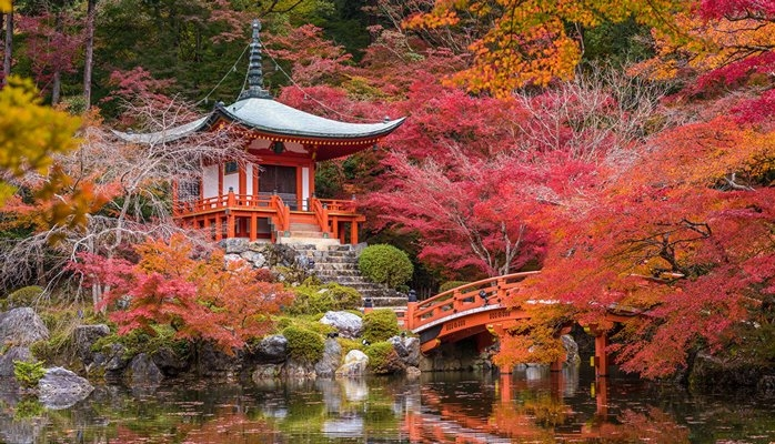 В Японии еще в одном городе придется платить туристический налог