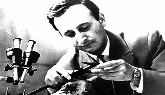 Дамир Гаджиев: ученый установивший древнейшую челюсть человека найденную в СССР