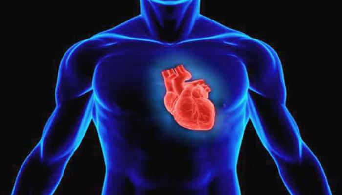 Ученые назвали новую причину инфарктов и инсультов