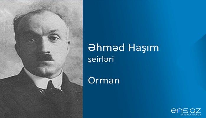 Əhməd Haşım - Orman