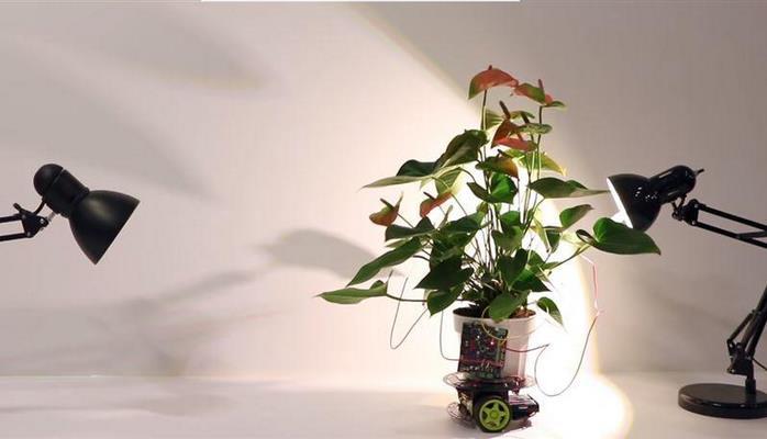 Ученые создали робота, который передвигает растения к свету