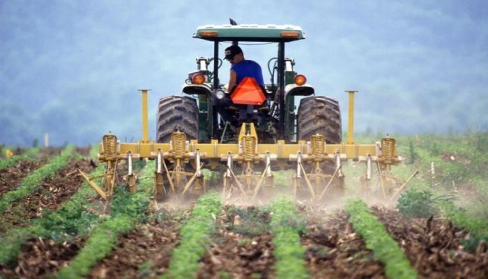 В Азербайджане фермерам выделено более 200 млн манатов