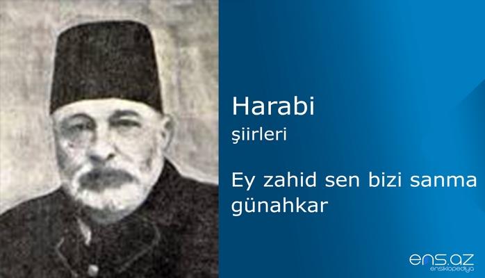 Harabi - Ey zahid sen bizi sanma günahkar