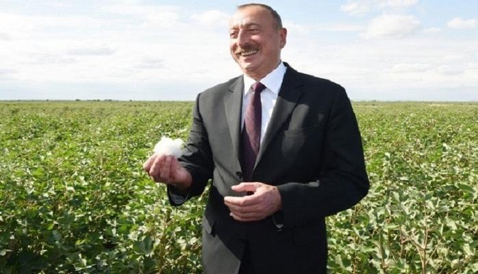 Prezident pambıqçılarla söhbət edib