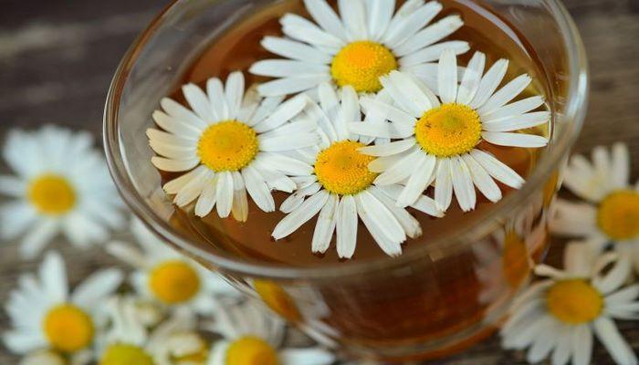 Эксперты назвали три вида чая, которые помогут избавиться от головной боли
