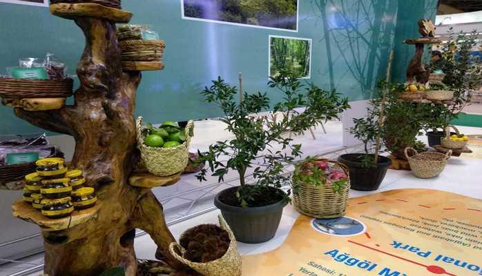 В Баку стартовала 9-я Азербайджанская международная выставка Caspian Ecology