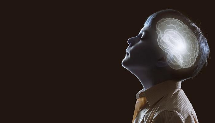 İnsan Hafızasını Açıklayan Bilimsel Modeller: Anıları Nasıl Depoluyoruz ve Gerektiğinde Nasıl Hatırlıyoruz?