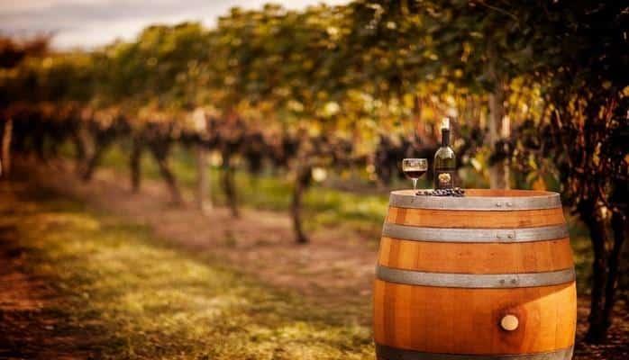 Азербайджан и Украина будут сотрудничать в винодельческой области