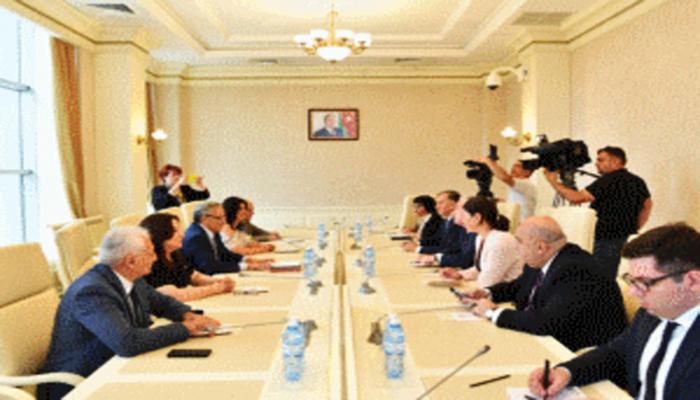 Грузинские парламентарии: Грузия и Азербайджан способны решать любые вопросы в обстановке дружбы и сотрудничества