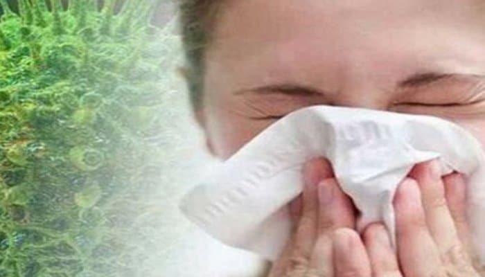 Вирусолог объяснил, как легко и просто отличить коронавирус от ангины и гриппа