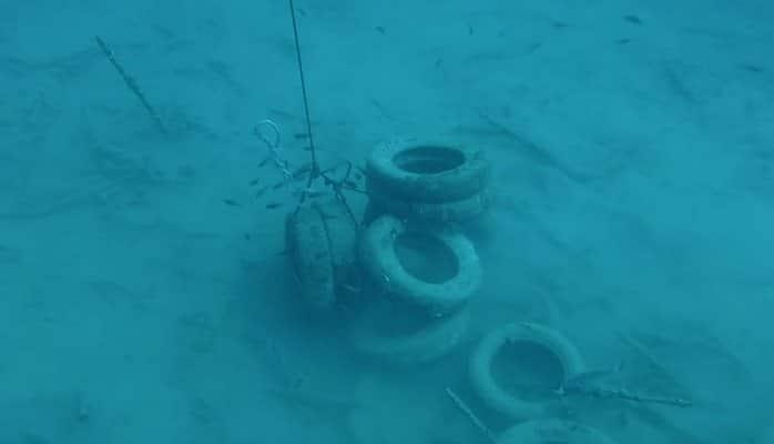Тысячи покрышек поднимают со дна Средиземного моря