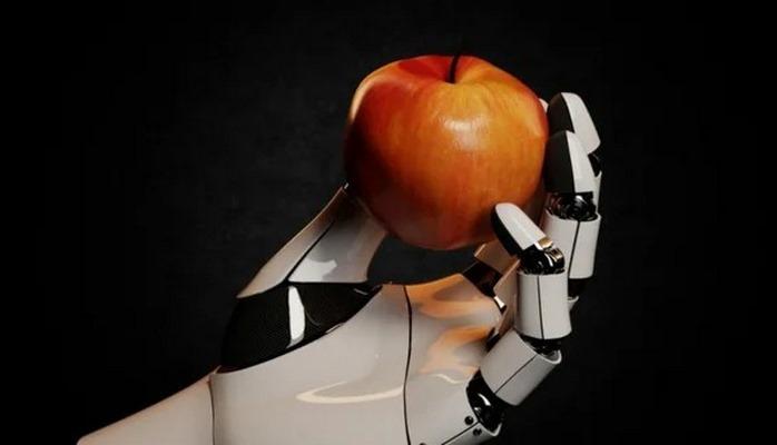 Pобот-садовод помогает людям собирать урожай яблок