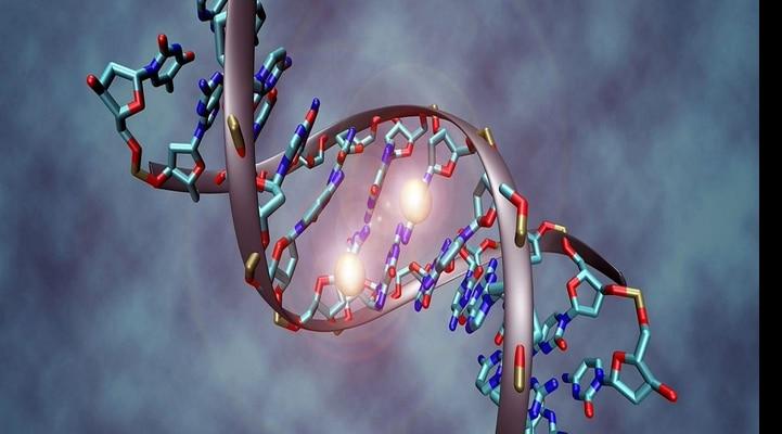 Gen tənzimləməsinin yeni fundamental yolu aşkar edilib
