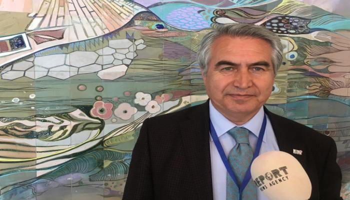 Türkiyənin UNESKO üzrə Komissiyasının sədri: 'Dolma türk yeməyidir və adı doldurmaq sözündən götürülüb'